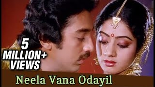 Neela Vana Odayil - Kamal Haasan, Sridevi - Gangai Amaran Hits - Vazhve Maayam - Romantic Song