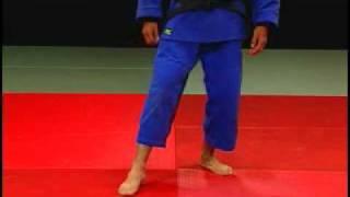 Judo - Posiciones o posturas