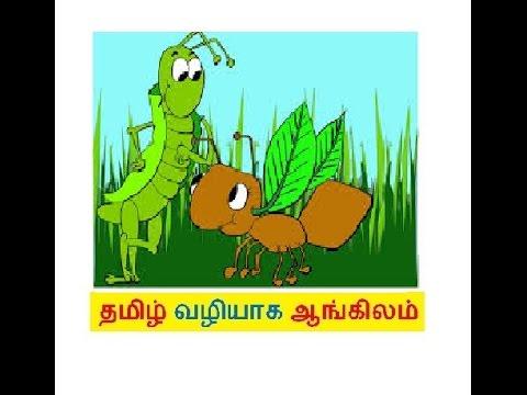 FREE SPOKEN ENGLISH THROUGH TAMIL -ANT AND GRASSHOPPER - -video 17