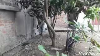 বদনা চোর (2017) Decent Group