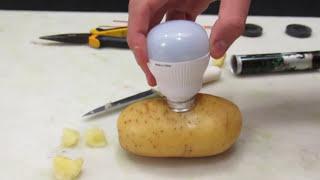 Faltou Luz em Casa? Liga na Batata. - Mágica - Light a Bulb with Potato - Magic.