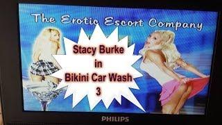Erotic Escort Company aka: Bikini Car Wash 3