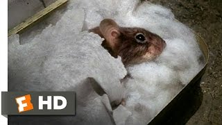 Mousehunt (2/10) Movie CLIP - Sleeping Mouse (1997) HD