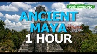 Exotic Ancient Rainforest Sounds - SOUND AMBIENCE FOR RELAXATION - TIKAL, GUATEMALA