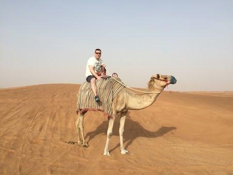 Xxx Mp4 Camel Riding In The Dubai Desert 3gp Sex