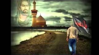 معجزة الامام علي (ع) في مصر 2013