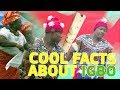Download Video Download Top 5 coolest facts about the Igbo people | Legit TV 3GP MP4 FLV