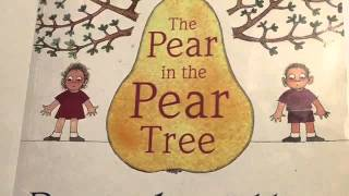 The Pear in the Pear Tree, written by Pamela Allen