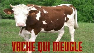 VACHE qui MEUGLE le cri de la VACHE le BRUIT des ANIMAUX SON de la VACHE COW noise MEUH