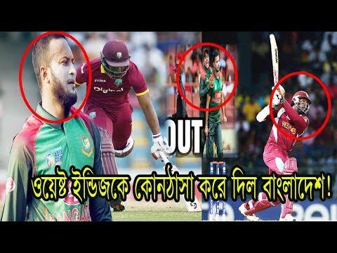 Xxx Mp4 টাইগারদের বোলিং তোপে দিশেহারা ওয়েষ্ট ইন্ডিজের ব্যাটসম্যানেরা Daily Reporter Bd Cricket News 3gp Sex