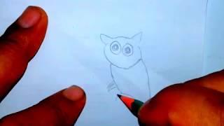 درس عن كيفيةرسم ببغاء بقلم الرصاص بكل سهولة