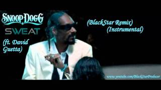 snoop dogg  wetsweat ft david guetta prod by trey wonder remix instrumental
