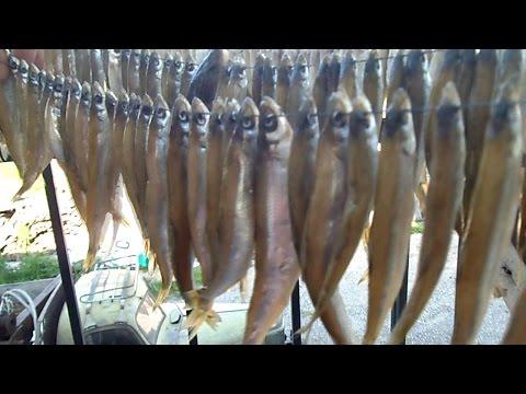 Прежде чем начать сушить рыбку ее нужно подготовить.