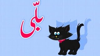 Billi Mein ne Pali Hai (Urdu Poem) | (بلّی (اردو نظم