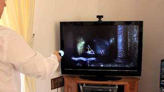 Harry Potter and the Deathly Hallows Part 2 - PlayStation Move
