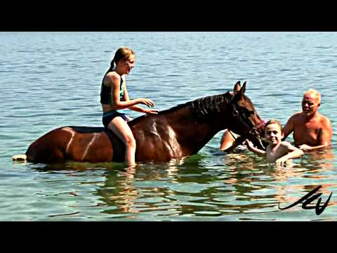 Lake Okanagan Stable Ride and Swim with Horses