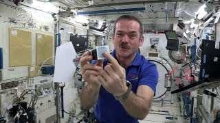 Astronaut Chris Hadfield Plays Jamie Hyneman and Adam Savage