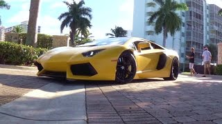 300 Worlds Best Supercars. Exotic Car Toy Rally Miami 2014  Lamborghini Bugatti Ferrari Pagani
