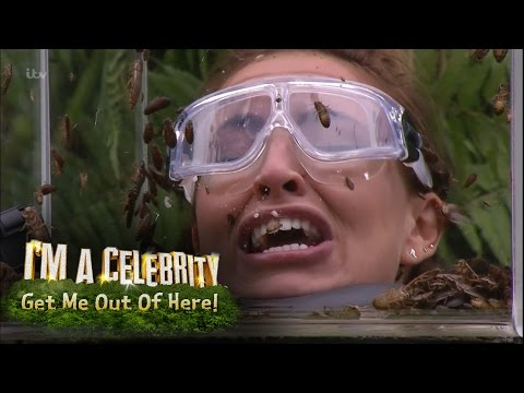 Xxx Mp4 Ferne Spencer And Vicky Face Terrifying Bushtucker Trial I 39 M A Celebrity Get Me Out Of Here 3gp Sex