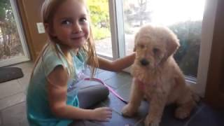AVA GETS A PUPPY!!!!