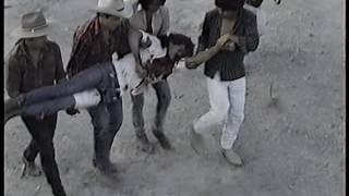 CORRIDOS DEL JARIPEO ROGELIO MORALES DOLOR Y MUERTE 3