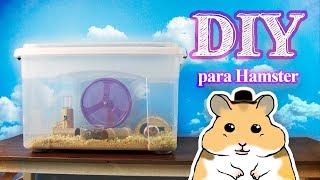 DIY Gaiola para Hamster com Caixa Organizadora | AnimalPetFans