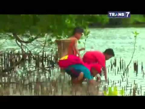 Si Bolang - Bertualang di Desa Kakara Pulau, Halmahera Utara