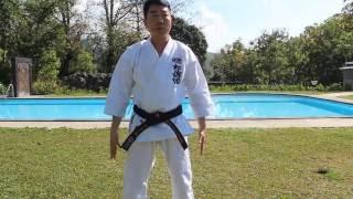 Shizentai Position