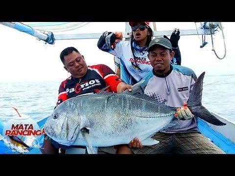 Selatan Labuan Bajo dengan Spot Ikan - Ikan Yang Sangat Menawan - Mata Pancing (61)
