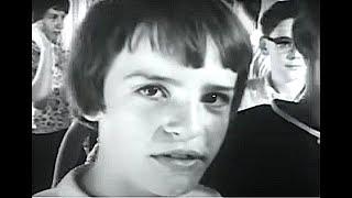 Best Bluegrass Clog Dancing Video Ever Made