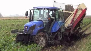Beet harvest accident. ビートハーベスター脱出