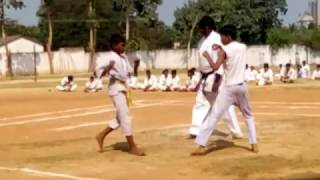 Best Fighting Video mp4 (2016).