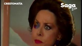 #SagaLive - Rebecca Jones, Alejandro Basave, Luis Donaldo Colosio y La Trakalosa
