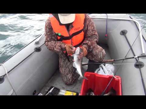 рыболовные снасти в мурманске