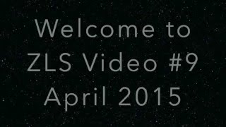 Roller Pigeons ZLS Video 9