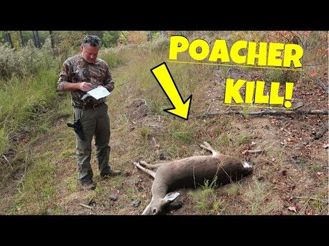 Xxx Mp4 POACHER KILLS DEER RIGHT UNDER HUNTER 3gp Sex