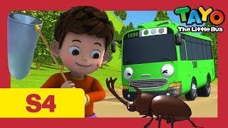 Tayo Español la Serie 4 l #1 La tarea de Duri l Tayo el pequeño Autobús
