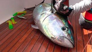 TUNA! Catch, Clean, Cook and EAT!!!! Gabriella