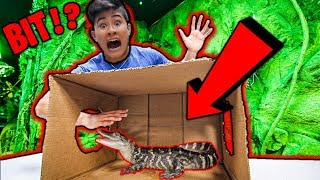 What's In The Box CHALLENGE **BIT by ALLIGATOR**