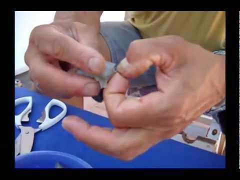 Anzuelado de Langostino y Gamba para pesca a corcho