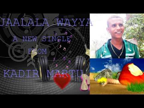 Kadir Mertu- Jaalala Wayya (Raggae Oromo Music 2015)