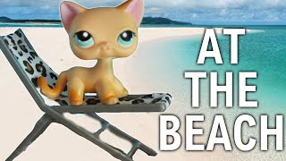LPS 10 Types of People at the Beach ! Ft PawesomeTV | Alice LPS