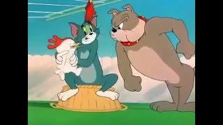 Tom And Jerry Cartoon in Urdu 2016