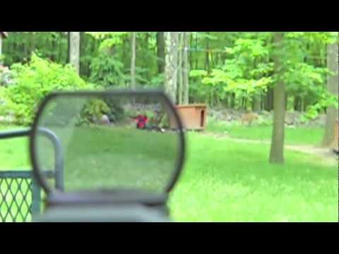 Panorama 4 Reticle Green Red Dot Sight Review