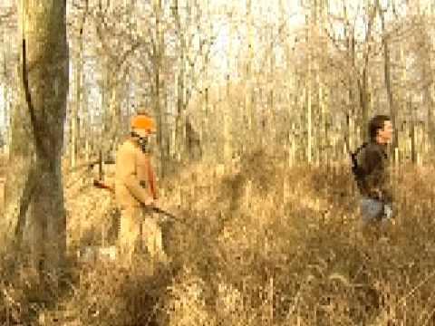 Kentucky Squirrel Hunt
