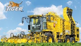 ROPA euro-Tiger V8-4 - Official Video