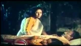 chandni poshore ke amare shoron kore - shelim chowdhury