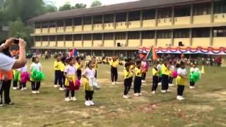 Zayn 39 s ber Cute Chicken Dance