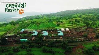 Chandoli Resort | Teaser | Amenities | Chandoli National Park