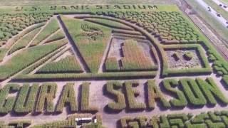 Twin Cities Corn Maze 2016